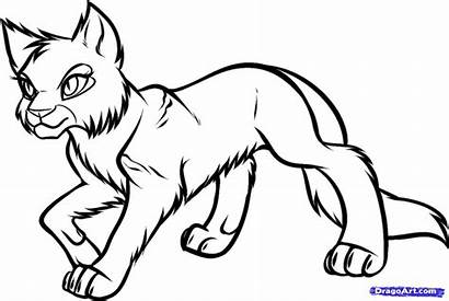 Warrior Cats Fighting Coloring Cat 1080p