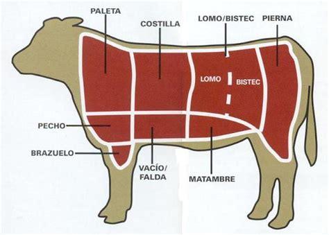La Res by Los 8 Cortes De La Carne De Res La Mejor Carne Chaco