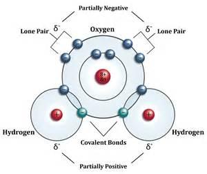 Water Molecule Covalent Bond