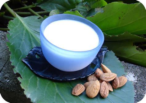 fitness 224 la maison faire lait d amande maison