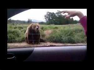 Best Funny Vide... Funny Videos