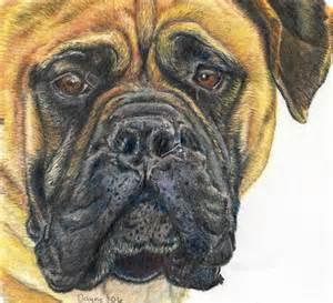 Colored Pencil Animal Art