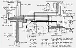 Super Cub 90 6v Wiring Diagrams