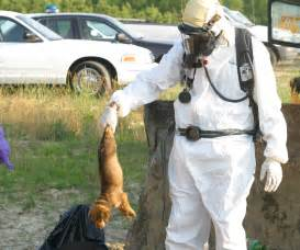 What Does The Aspca Stand For by Hazmat Suit Images