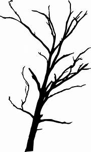 17 Dead Tree Silhouette (PNG Transparent) | OnlyGFX.com