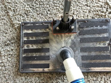 Carpet Cleaning In St. Louis Mo And Southern Illinois Dark Grey Carpet White Walls Not Just Hollywood Fl Cleaning Boston Lincolnshire Ogden Cleaners Pile Definition Can I Lay Without Grippers At Home Tips Hardwood And Vacuum