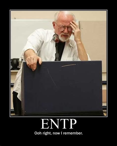 Entp Memes - 73 best entp images on pinterest infj infp capricorn and entp