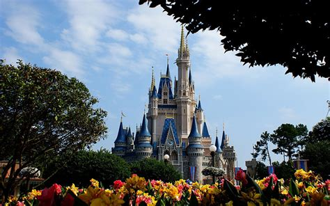 Disney World Castle Wallpaper by Disney Castle Wallpapers Hd Pixelstalk Net