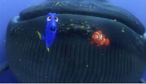 Dory Finding Nemo Whale