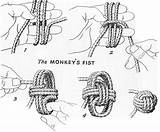 Monkeys fist paw knot illustrated