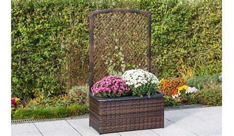Blumenkasten Mit Spalier Kaufen I Meingartenversand