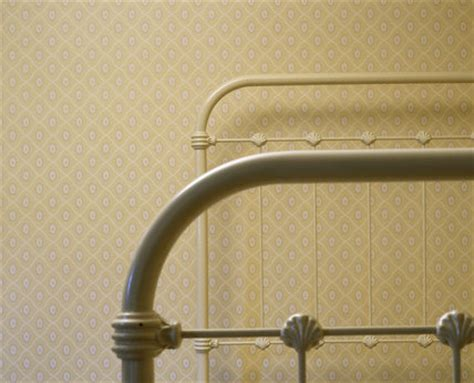 detail    white painted iron bedstead  shell