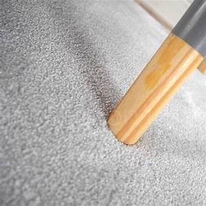Marque De Peinture Haut De Gamme : tapis haut de gamme moelleux gris clair ~ Zukunftsfamilie.com Idées de Décoration