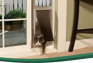 Cat leashes and harnesses training cat get free image for Dog door window insert