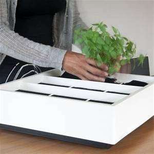 Vertikaler Garten Kaufen : vertikaler indoor oder outdoor garten karoo online kaufen online shop ~ Watch28wear.com Haus und Dekorationen