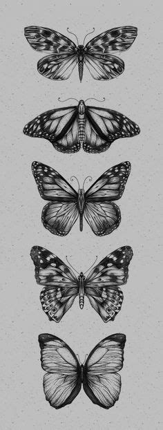 Butterfly Tattoo Designs in 2020 (With images