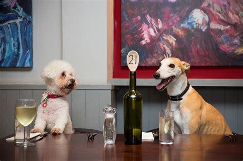 friendly dog hotel inn restaurant keswick