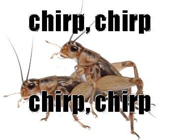 Crickets Chirping Meme - crickets chirping meme www pixshark com images galleries with a bite