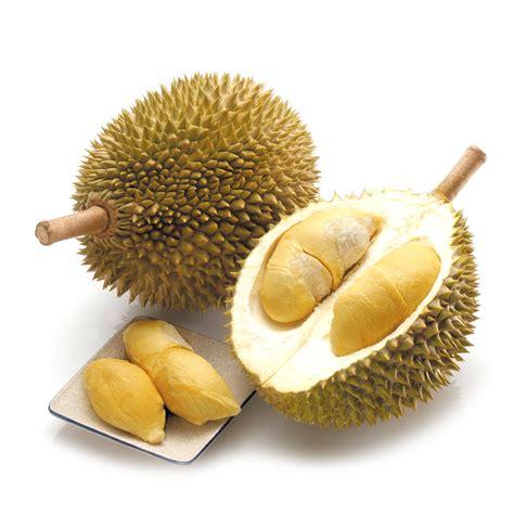 dorian cuisine durian the king of fruits le durian le roi des fruits