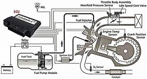 Fuel Injection Has Evolved From Mechanical Systems To A Variety Of Electronically Operated  Efi