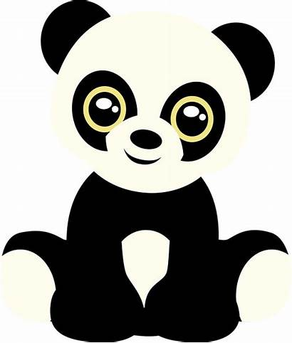 Panda Bear Teddy Animal Zoo Cub Solar