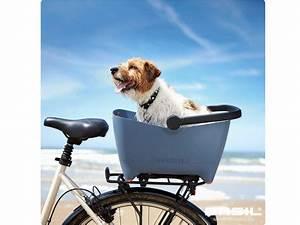 Fahrradkorb Hund Hinten : basil fahrradkorb hund buddy hinten fahrradkomfort ~ Kayakingforconservation.com Haus und Dekorationen