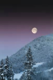 Beautiful Winter Snow Full Moon