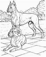 Boxer Coloring Dog Printable Realistic Dogs Printables Wuppsy Getcolorings Pets Colors Animal Animals Getdrawings sketch template