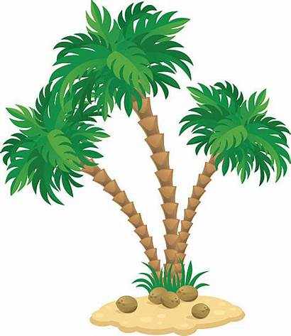 Tree Palm Clipart Trunk Illustrations Clip