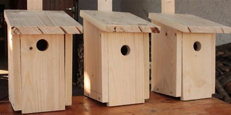 bauen mit kindern fr 252 hlingsaktion nistk 228 sten bauen mit kindern