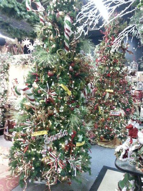 christmas trees tallahassee com community blogs