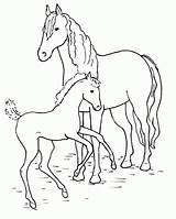 Horse Sheets Printable Worksheets sketch template