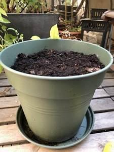 Compost En Appartement : accueil ~ Melissatoandfro.com Idées de Décoration