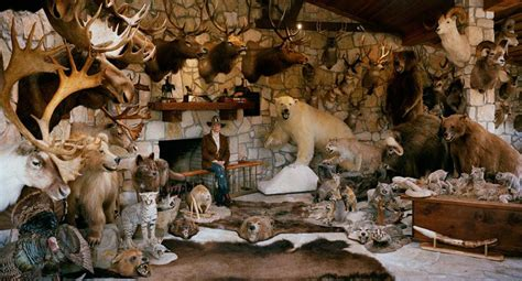 Taxidermy Home Decor: Taxidermy Decor: How Much Is Overkill?