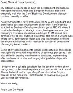 Business Development Manager Cover Letter Sample What To