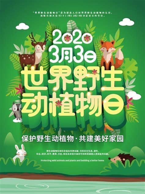 世界野生动植物日海报图片素材-海报DM-百图汇素材网