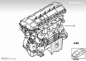 Bmw E46 M54 Engine Diagram