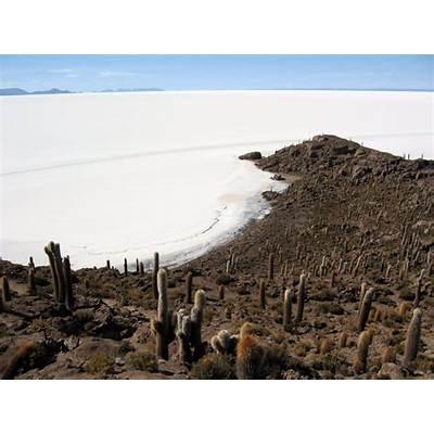 Panoramio - Photo of Isla Del Pescado Salar de Uyuni