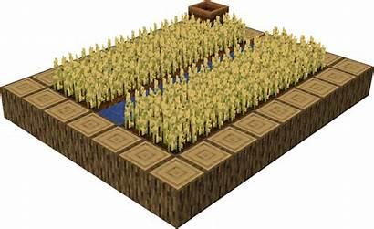 Minecraft Farm Plains Blueprints Village Blueprint Structure