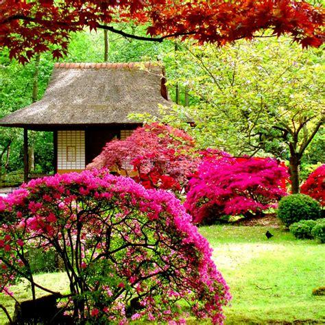 Garden Picture Hd by Beautiful Flowers Garden Hd Wallpaper Hd Wallpapers
