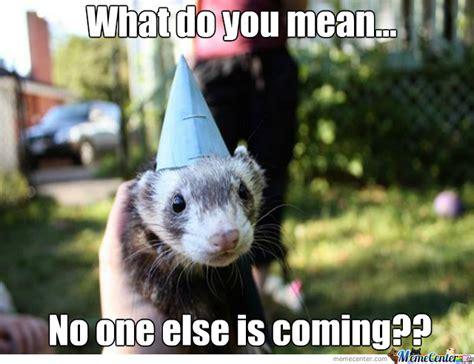 Ferret Meme - forever a ferret by eatmyfist meme center