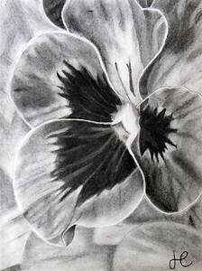 Charcoal Flower on Behance