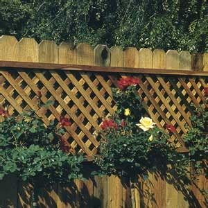 lattice fence with vines 151 best images about lattice decorating ideas on pinterest decks privacy walls and lattice fence
