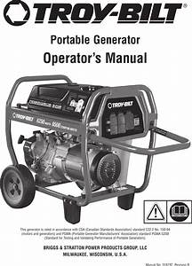 Troy Bilt 6250 Watt Portable Generator Users Manual