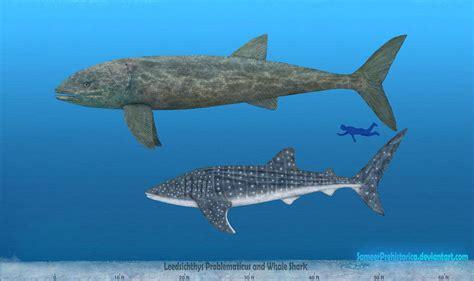 Image_caption = leedsichthys problematicus & liopleurodon leedsichthys problematicus was a giant pachycormid (an extinct group of mesozoic bony fish) that. Leedsichthys by SameerPrehistorica on DeviantArt