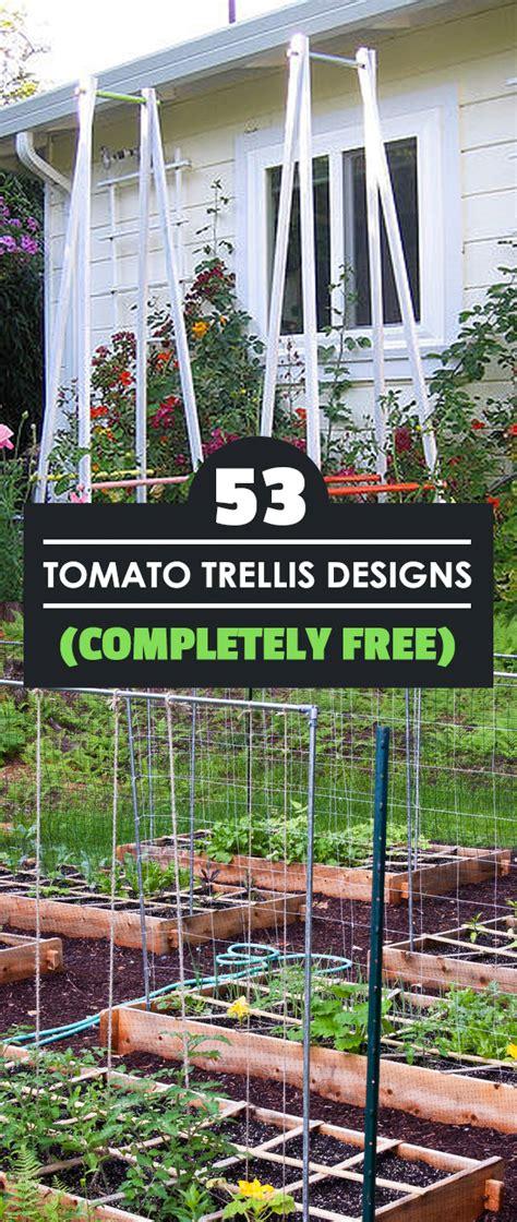 tomato trellis designs completely