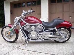 Free Harley Davidson V