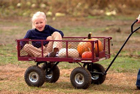 sevis login help desk 11 pumpkin patch topeka ks roga pumpkin patch