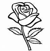 Nature Roses Coloring sketch template