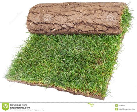Roll Of Grass Rug Stock Photo. Image Of Lawn, Grass
